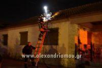 alexandriamou_fotia_neoxoropoulo0011