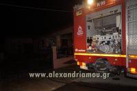 alexandriamou_fotia_neoxoropoulo0018