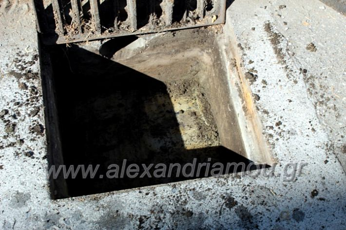 alexandriamou.gr_freatia25.9.20IMG_0414