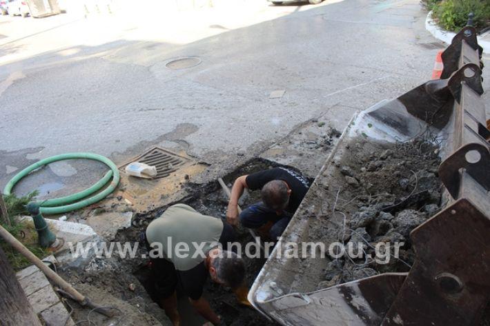alexandriamou.gr_freatiovodafone009
