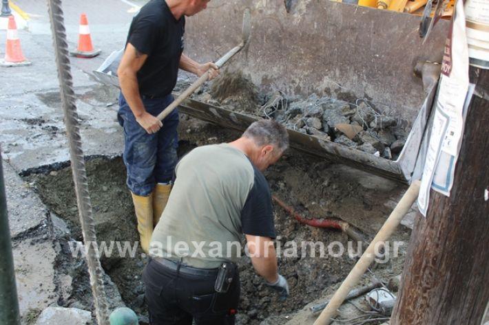 alexandriamou.gr_freatiovodafone011