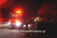 alexandriamou_fotia_palioxori0005