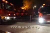 alexandriamou_fotia_palioxori0015