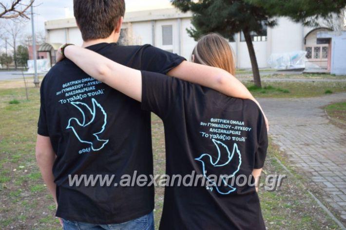 alexandriamou_galaziopouli2019006