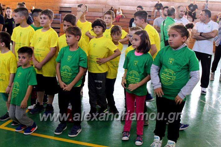 alexandriamou.gr_GASAGIASMOS2019IMG_0503