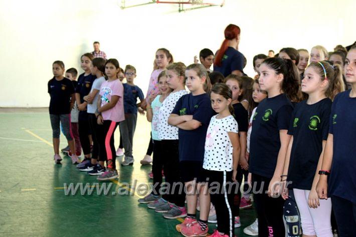 alexandriamou.gr_GASAGIASMOS2019IMG_0505