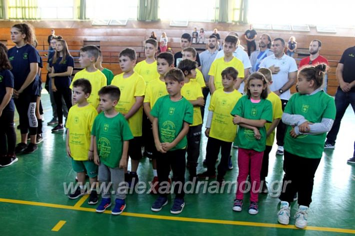 alexandriamou.gr_GASAGIASMOS2019IMG_0513