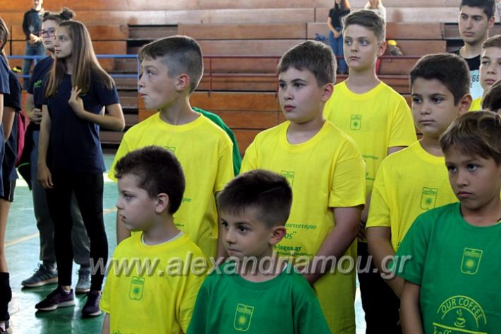 alexandriamou.gr_GASAGIASMOS2019IMG_0514