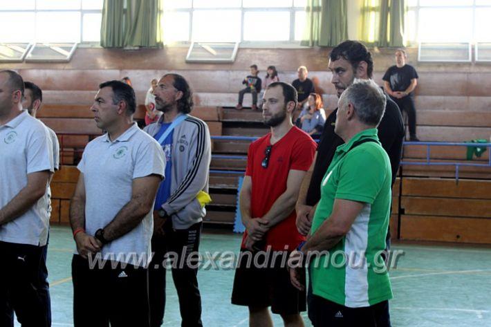 alexandriamou.gr_GASAGIASMOS2019IMG_0520