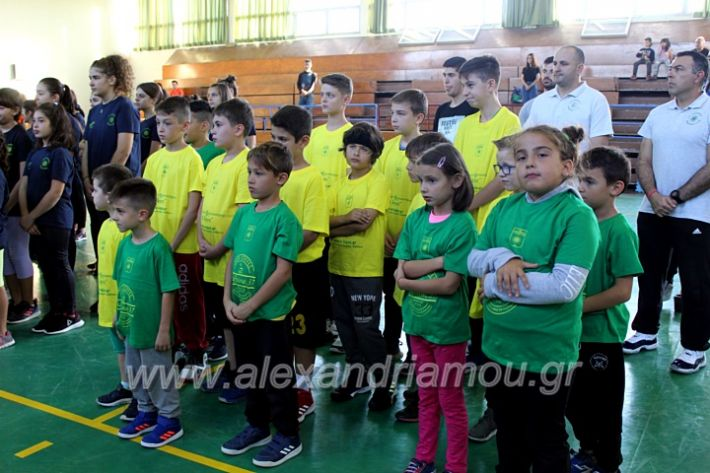 alexandriamou.gr_GASAGIASMOS2019IMG_0522