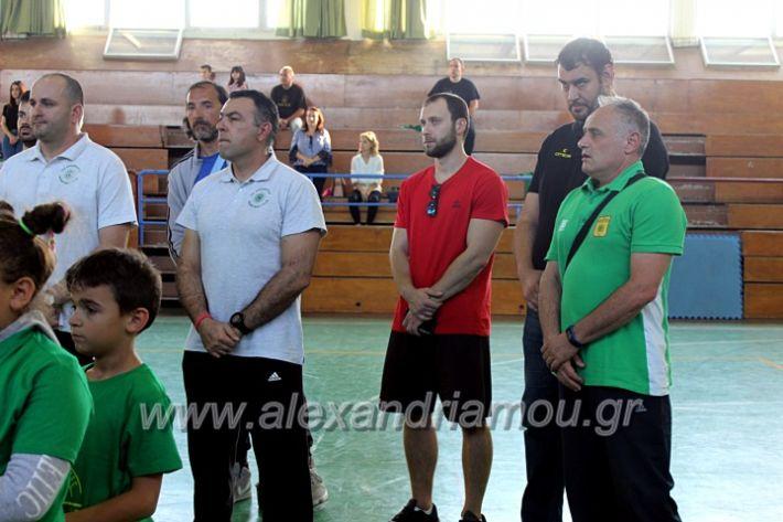 alexandriamou.gr_GASAGIASMOS2019IMG_0523