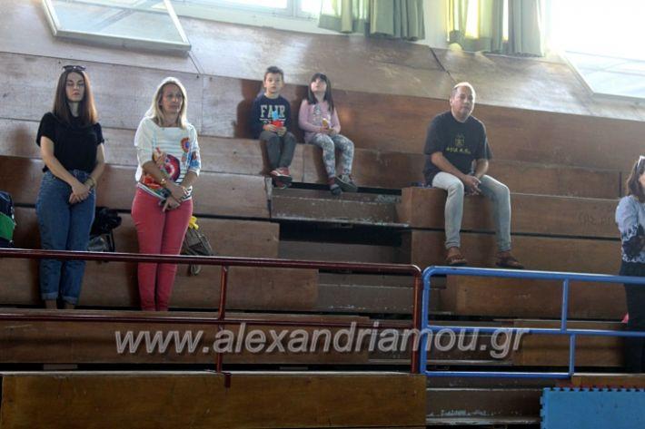alexandriamou.gr_GASAGIASMOS2019IMG_0526