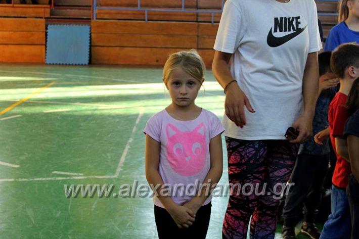 alexandriamou.gr_GASAGIASMOS2019IMG_0542