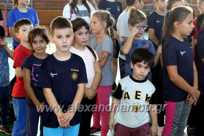 alexandriamou.gr_GASAGIASMOS2019IMG_0544