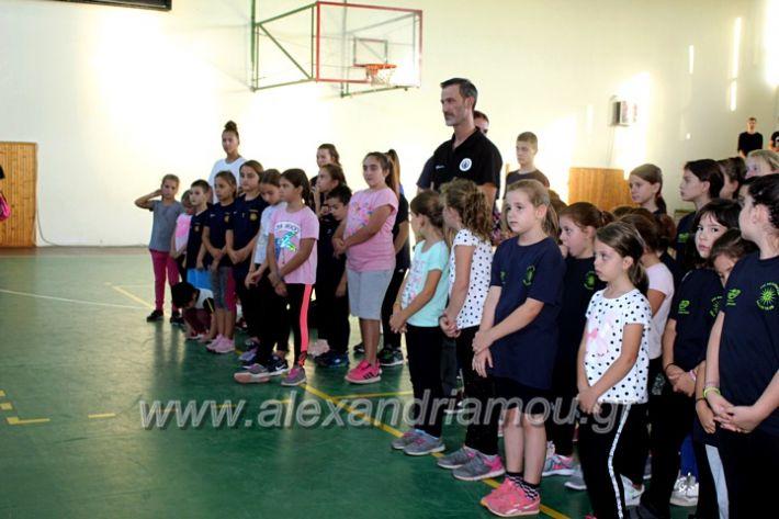 alexandriamou.gr_GASAGIASMOS2019IMG_0568