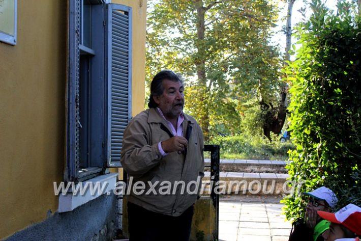 alexandriamou.gr_giobanopoulos7oIMG_2031