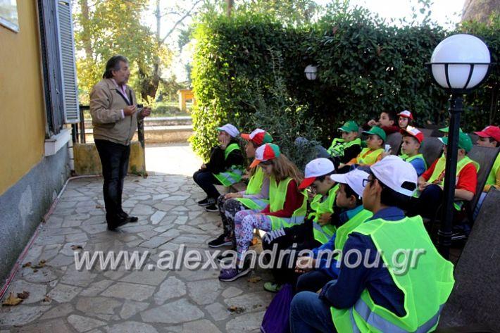 alexandriamou.gr_giobanopoulos7oIMG_2033