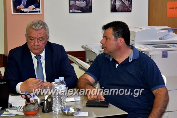 alexandriamou_gkirinisdimarxos2019007
