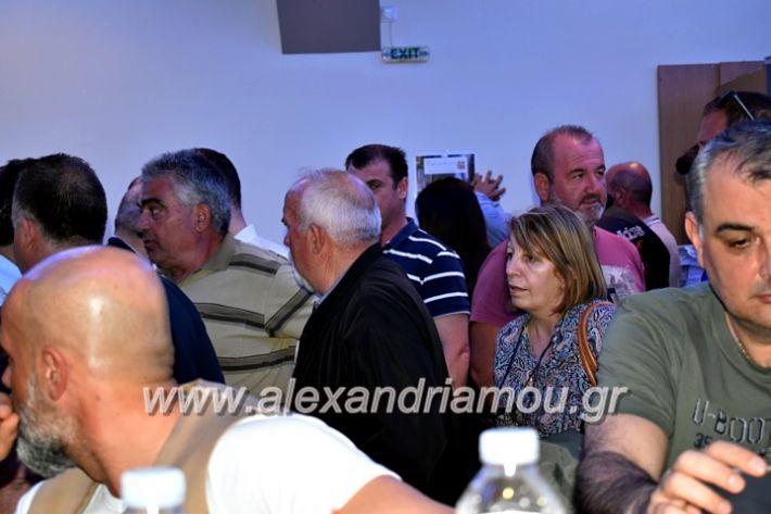 alexandriamou_gkirinisdimarxos2019027