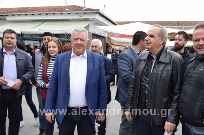 alexandriamou.gr_gkirinilaiki2019012