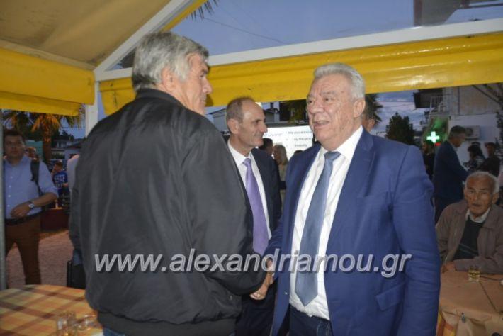 alexandriamou_gkirinisplati2019004