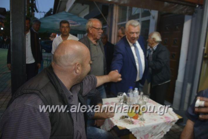 alexandriamou_gkirinisplati2019019