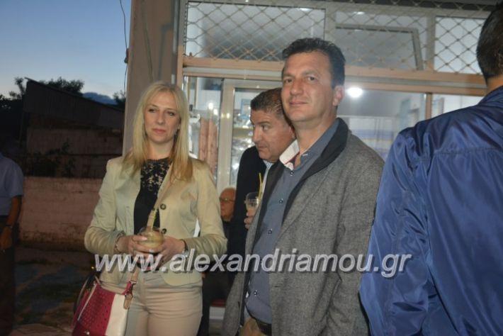 alexandriamou_gkirinisplati2019064