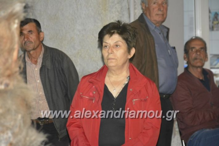 alexandriamou_gkirinisplati2019101