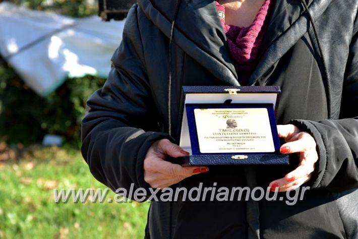alexandriamou.gr_palioxorigrounoxara19DSC_0192