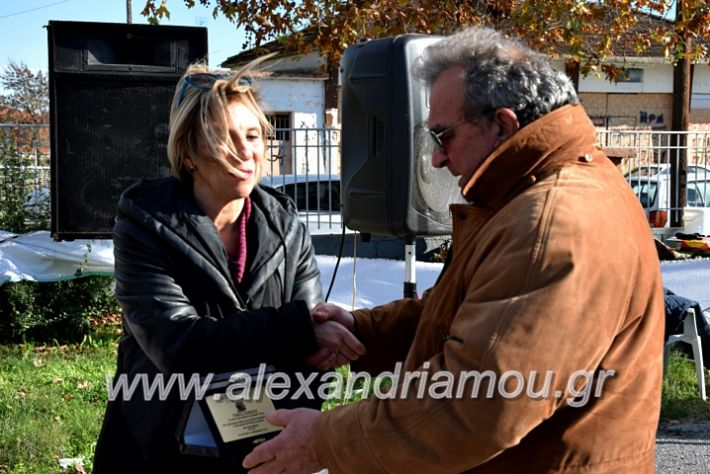 alexandriamou.gr_palioxorigrounoxara19DSC_0193