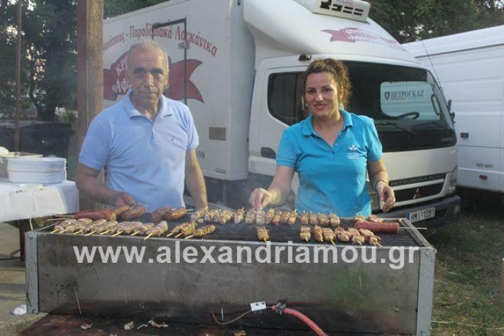 alexandriamou.gr_brusakipanigiri2019000