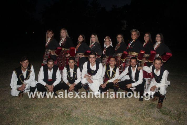 alexandriamou.gr_brusakipanigiri2019009