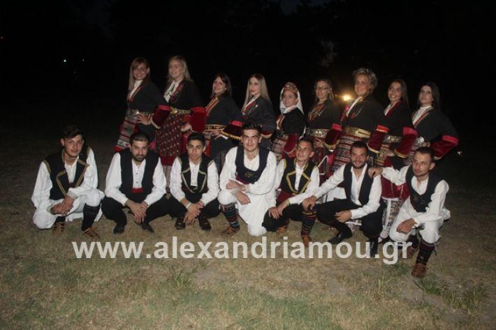 alexandriamou.gr_brusakipanigiri2019010