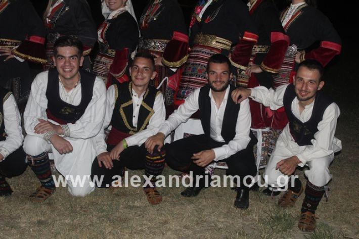alexandriamou.gr_brusakipanigiri2019013
