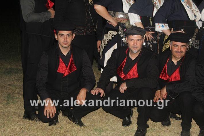 alexandriamou.gr_brusakipanigiri2019019