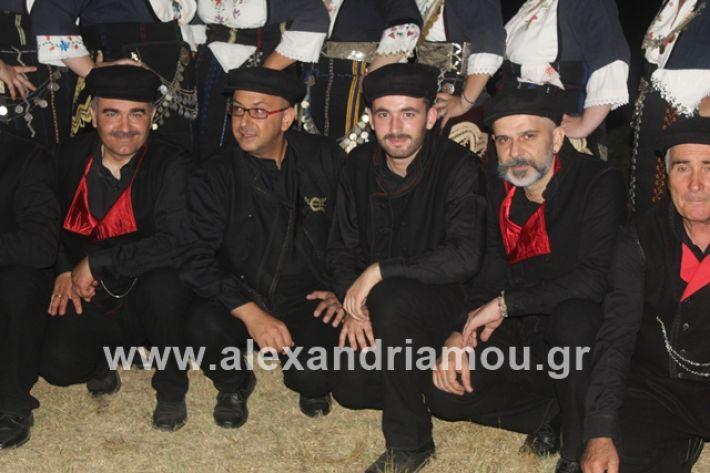 alexandriamou.gr_brusakipanigiri2019020