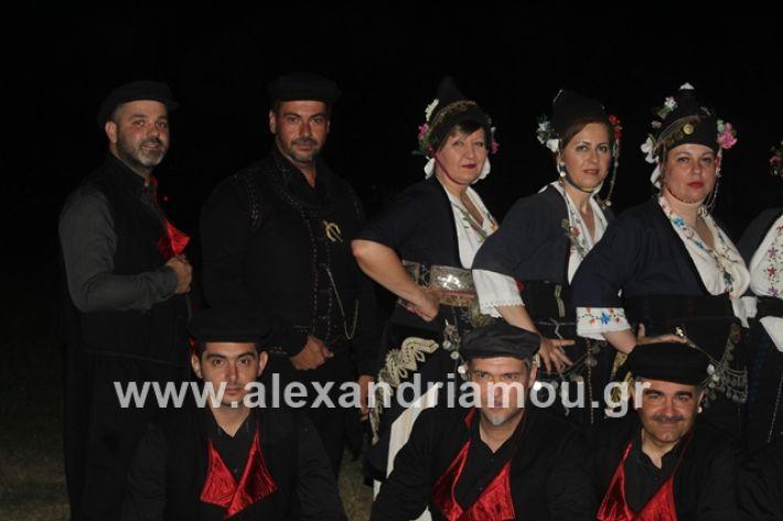 alexandriamou.gr_brusakipanigiri2019021