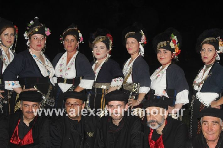 alexandriamou.gr_brusakipanigiri2019022