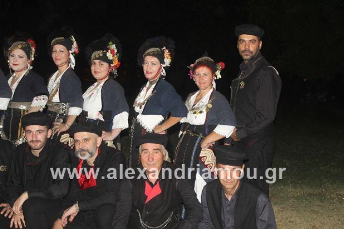 alexandriamou.gr_brusakipanigiri2019023