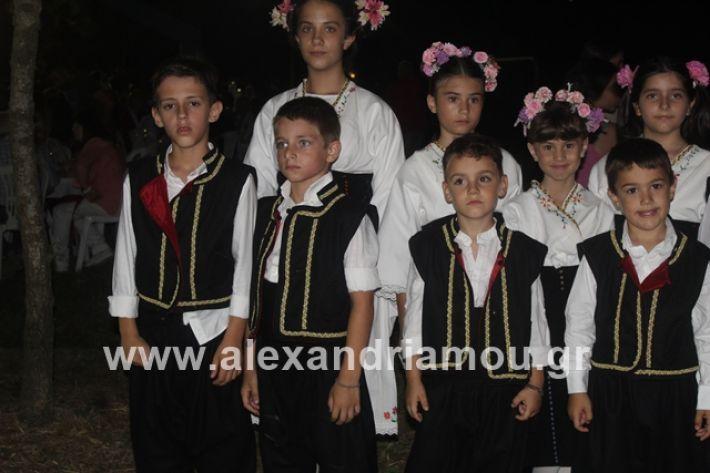 alexandriamou.gr_brusakipanigiri2019035