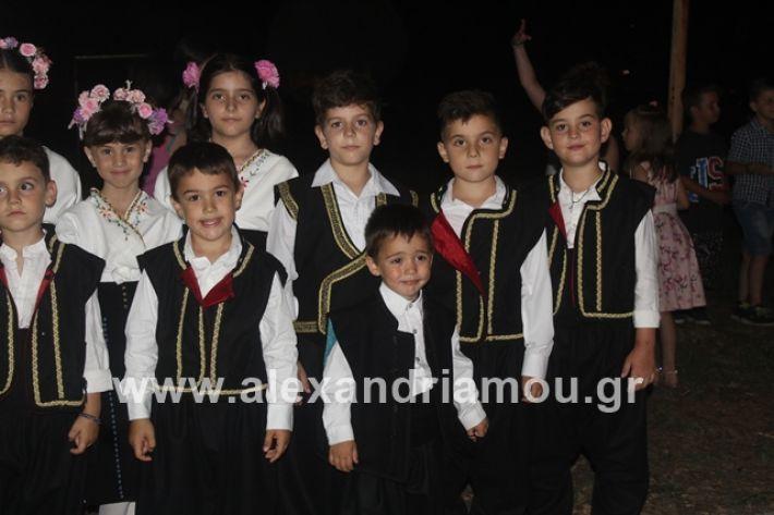 alexandriamou.gr_brusakipanigiri2019036