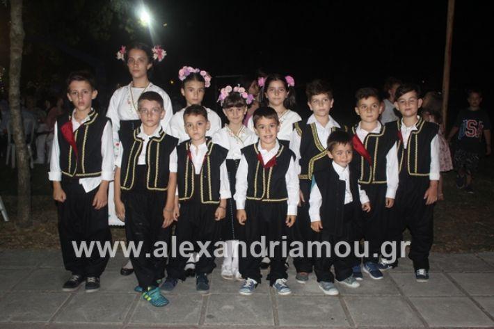 alexandriamou.gr_brusakipanigiri2019037