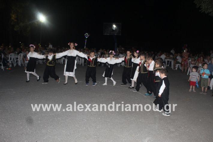 alexandriamou.gr_brusakipanigiri2019054