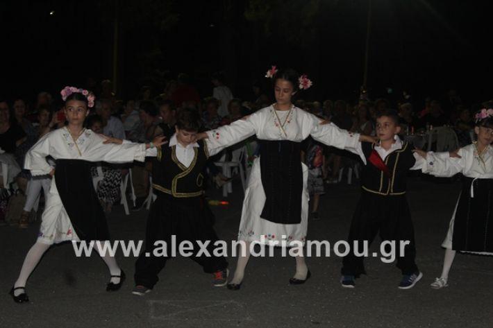 alexandriamou.gr_brusakipanigiri2019055