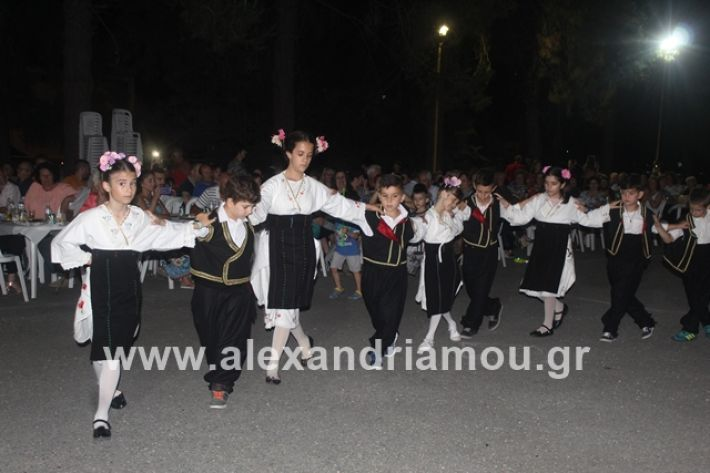 alexandriamou.gr_brusakipanigiri2019057