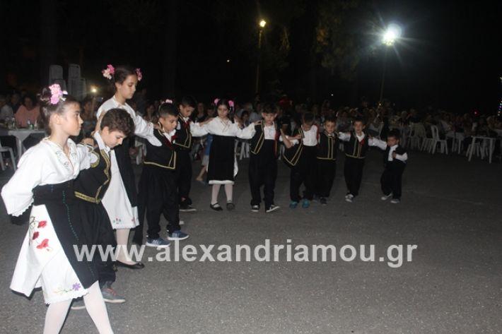 alexandriamou.gr_brusakipanigiri2019058