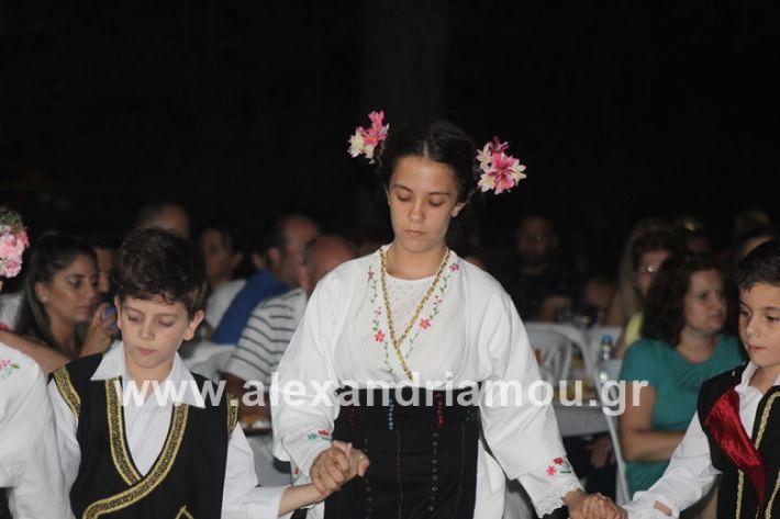 alexandriamou.gr_brusakipanigiri2019064