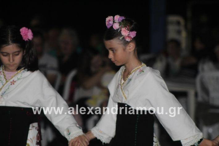 alexandriamou.gr_brusakipanigiri2019066