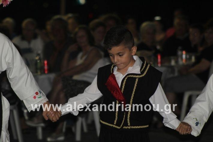 alexandriamou.gr_brusakipanigiri2019068