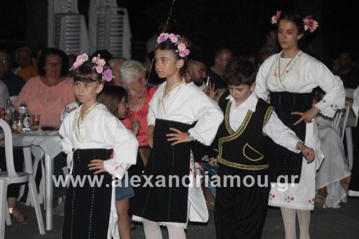 alexandriamou.gr_brusakipanigiri2019076